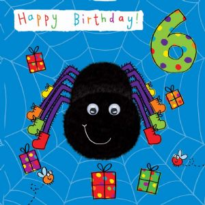 Childrens Birthday Card age 6 Spider